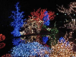 Fondest Memories of Outdoor Xmas Lights 1