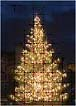 Using Color to enhance your christmas light decorations 3